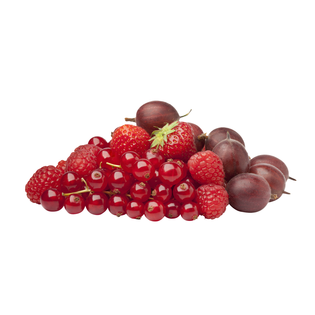 Red Berry Extract